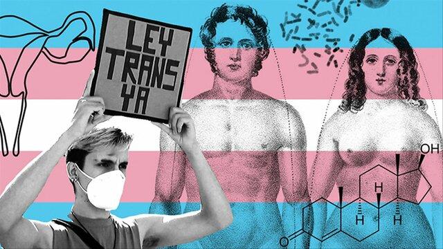 Eliminación de la transexualidad