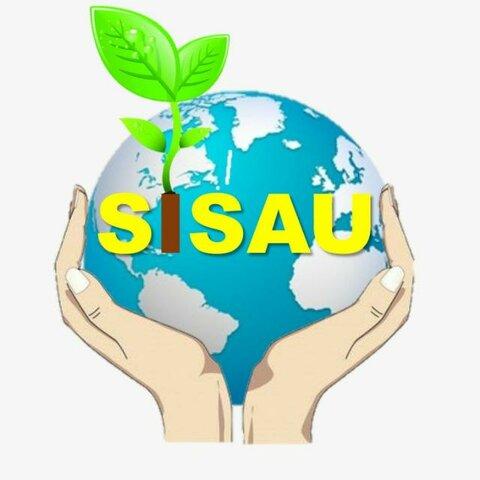 Creación Semillero de investigación SISAU