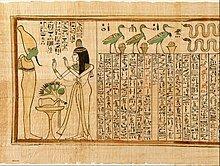 el primer papel papiro