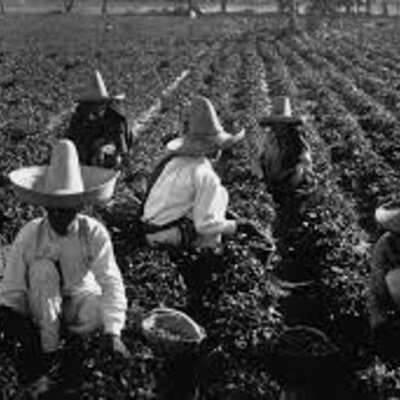 Evolución de las políticas agrícolas en México timeline