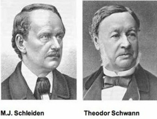 Schleiden y Schwann