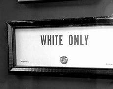 White Primaries