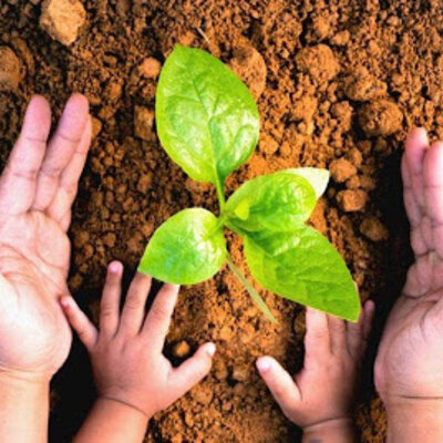 Evolución de la Educación Ambiental y su Marco Normativo timeline