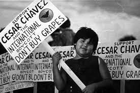 United Farm Worker's California Delano Grape Strike