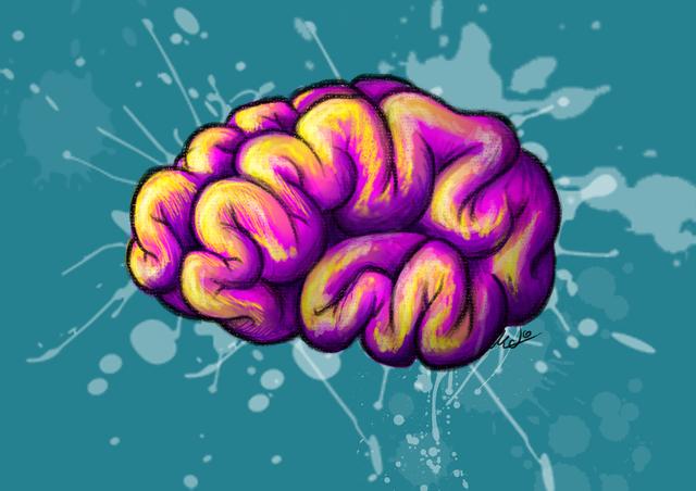 Paradigma Neurocientífico