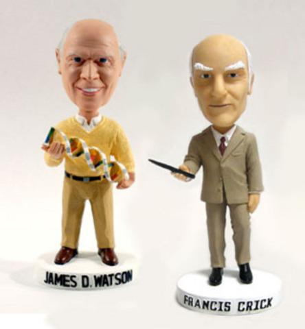 Watson & Crick Nobelprijs gewonnen voor Fysiologie of Geneeskunde