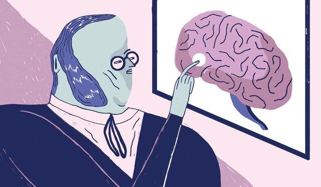 Teoría de las localizaciones cerebrales