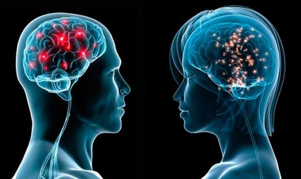 Equipo neuronal del hombre