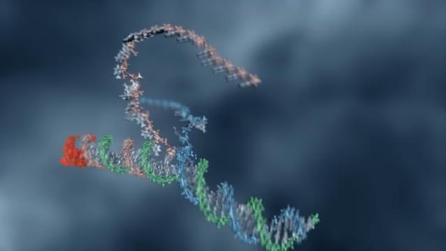 "Microsoft tells us about ""Programming DNA"""