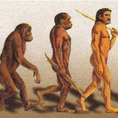 La prehistoria timeline