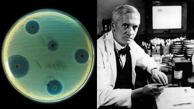 Fleming descubre penicilina.