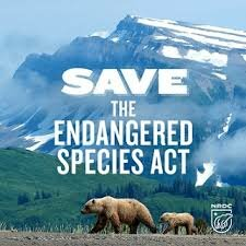 Engaged Species Act
