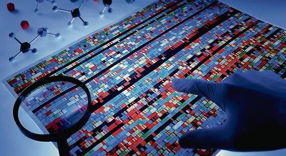 Se completa la secuenciación del genoma humano
