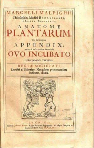 Anatome Plantarum