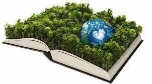 Relación Desarrollo - Educación.