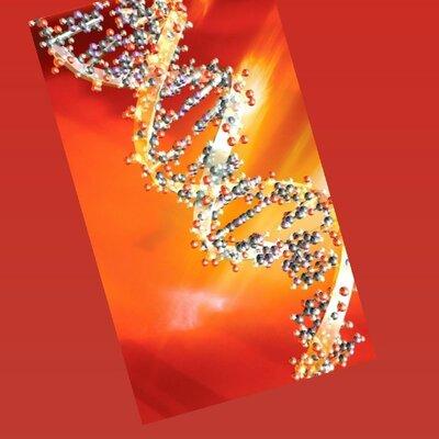Inicio de la genetica hasta el decubrimiento del ADN. timeline
