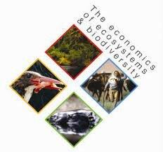 La Economía de los Ecosistemas y la Biodiversidad