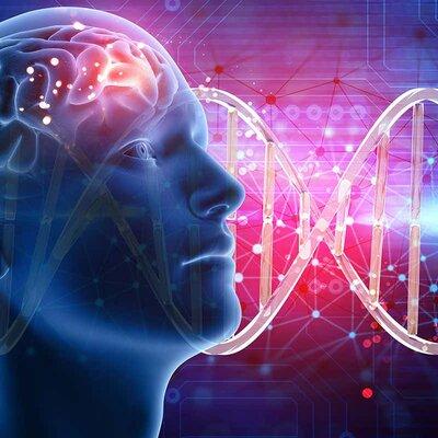 Contribuciones ala genética a traves de  los años timeline