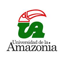 INICIE LOS ESTUDIOS EN LA UNIVERSIDAD