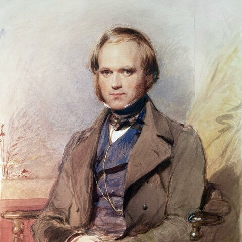 Darwin is Born (12FEB1809-19APR1882)