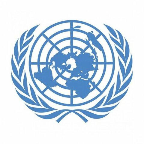 Organització de les Nacions Unides