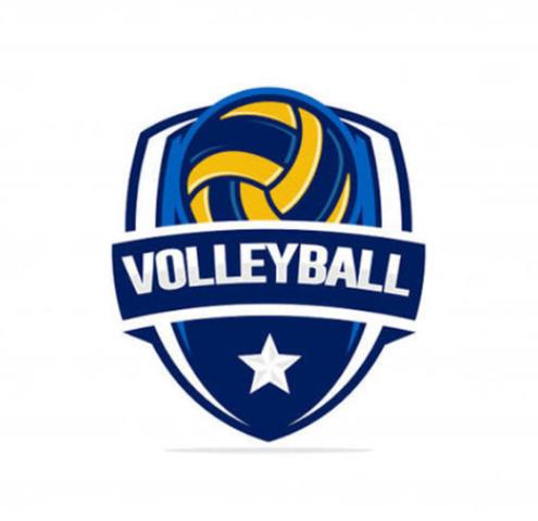 "Se llamó de manera oficial ""volleyball"""