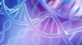 CRONOGRAMA SOBRE LOS PRINCIPALES DESCUBRIMIENTOS DEL DNA timeline