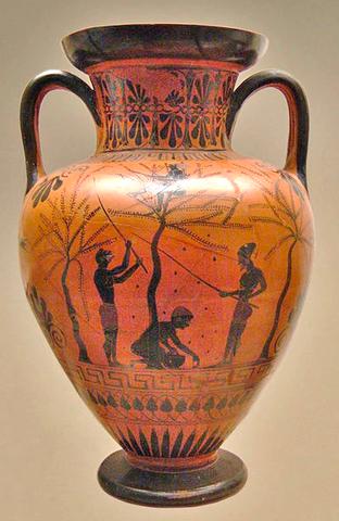 Anfora a figure nere - circa 520 a.C.