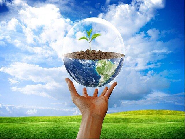 Экология. Этап 6