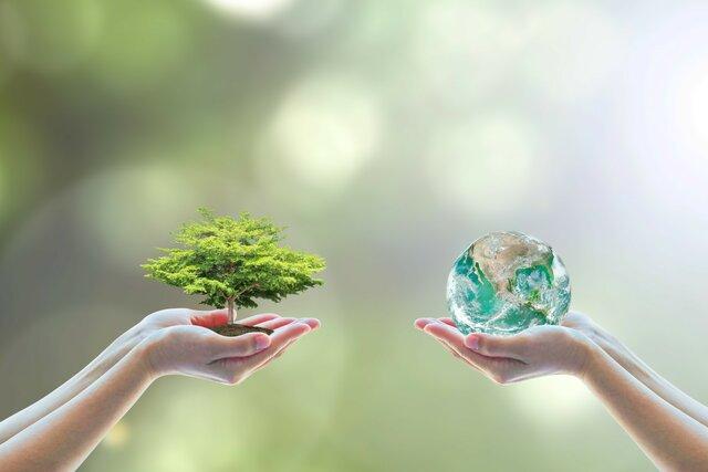 Экология. Этап 8