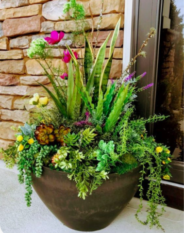Outdoor Floral Arrangements (Posted 4/30)