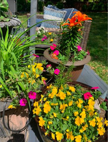 Outdoor Florals