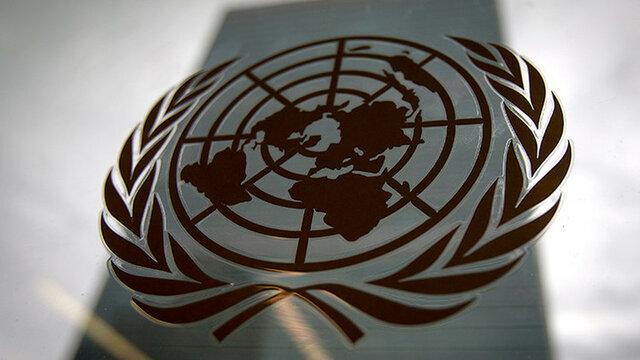 La ONU y declaración DDHH