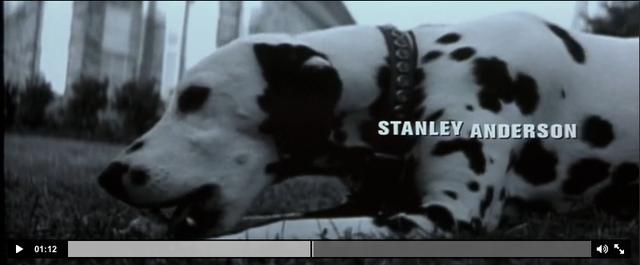 dog scene (1:13)