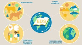 Línea de tiempo: Nociones básicas de la Educación para el Desarrollo timeline