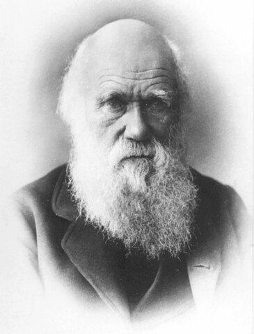 Teoría de la evolución y selección natural, Charles Darwin (1809 - 1882)
