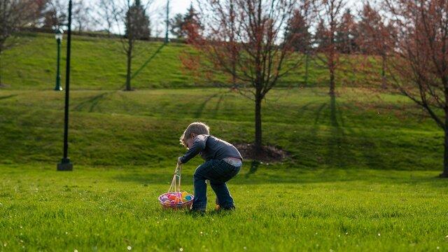 la chasse aux oeufs