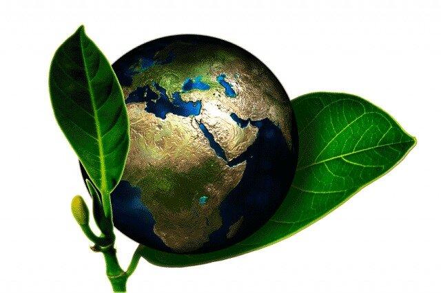 Inicio de la Educación Ambiental