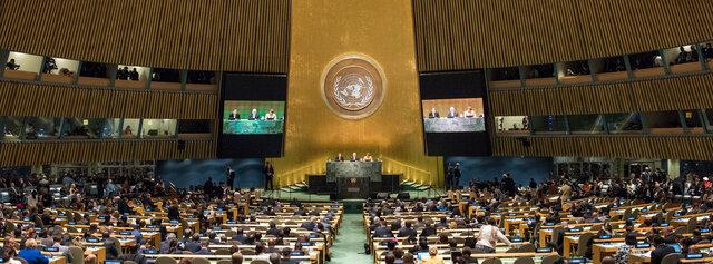 Los principales orgánulos de la ONU