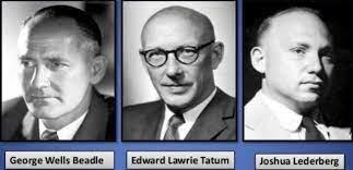 George Beadle,  Edward Tatum y Joshua Lederberg