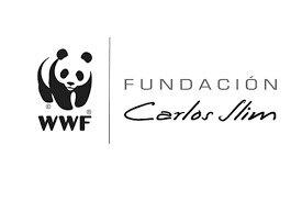 Fundación de World Wildlife Fund