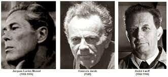 F Jacob, A Lwoff, J Monod