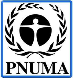 Creación del PNUMA y de PIEA