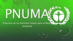El Programa de las Naciones Unidas para el Medioambiente
