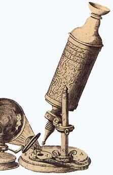 El desarrollo del microscopio y Hooke.