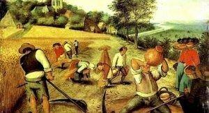 Revolución agrícola 1750