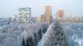 времена года Новосибирска timeline