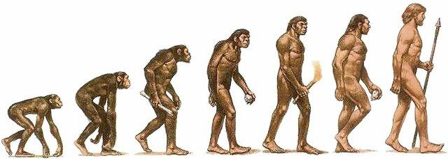 Aparició homo hàbilis. Prehistòria