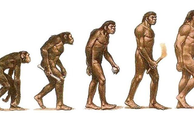 Aparició homo hàbilis(Prehistòria)