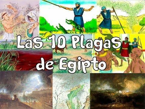 10 PLAGAS